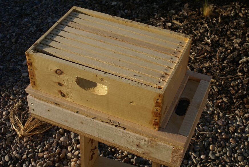 A hive box sitting on the feeder
